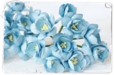 Magnolia - Vintage Blue Cherry Blossoms - Smooth