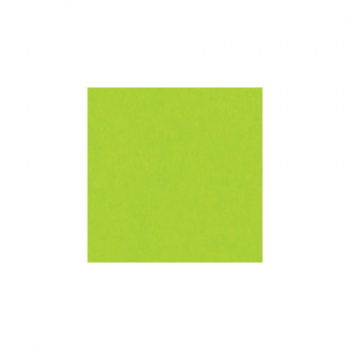 Bazzill - Electric Cardstock Green 12x12""