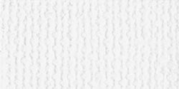 Bazzill - Scrapbookingpapier Cardstock Textured Canvas White 12x12""